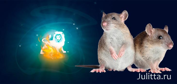 рожднные в год крысы под знаком девы