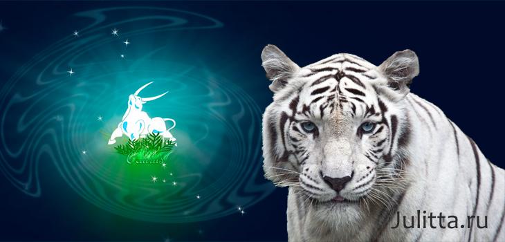 Телец тигр в сексе